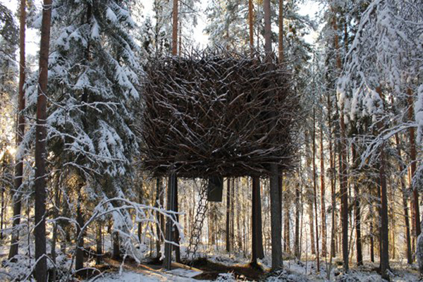 TREE-HOTEL-HARADS-SWEDEN 2