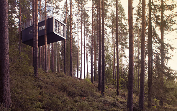 TREE-HOTEL-HARADS-SWEDEN 8
