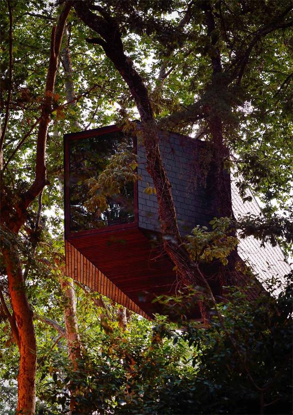 Tree-Snake-Houses-Pedras-Salgadas-Rebelo-de-Andrade-3